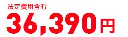 法定費用含む・消費税抜き 42,270円